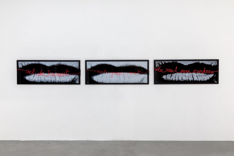 Florence Cantié-Kramer_Mot pour mot_Vue exposition 26_BD.jpg