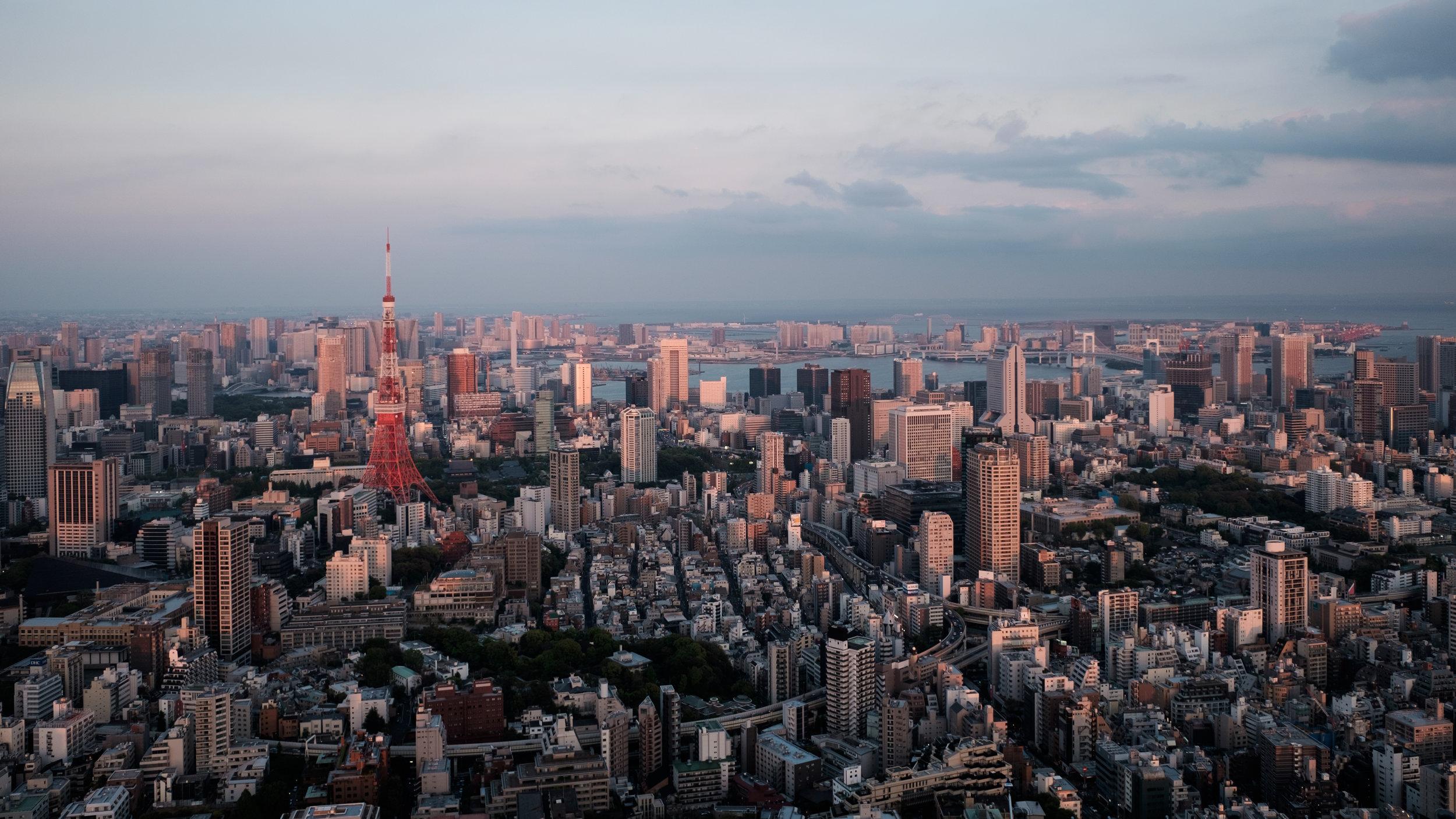 Top of Mori Tower (I)