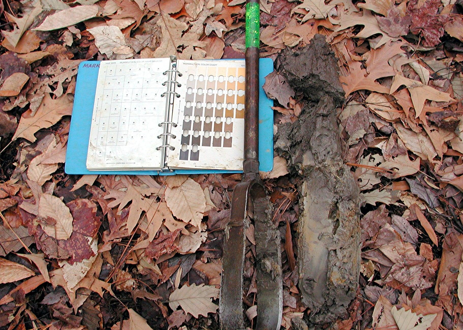 soil profile.JPG