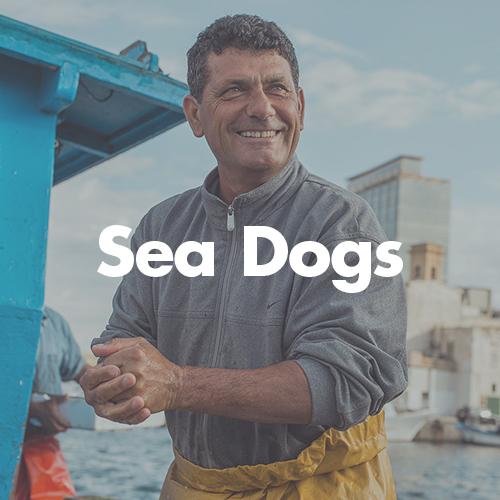 pugmire_0007_sea dogs.jpg