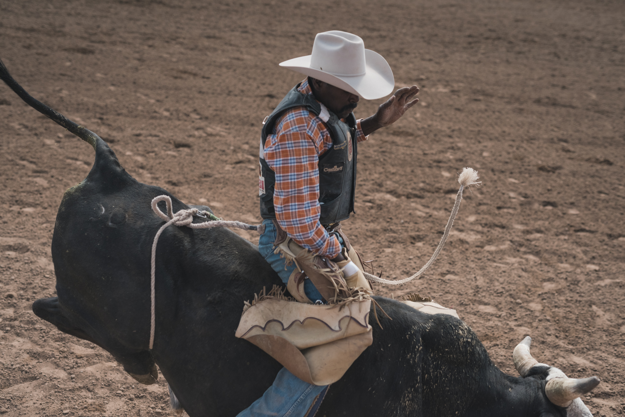 Rodeo_selects-3555.jpg
