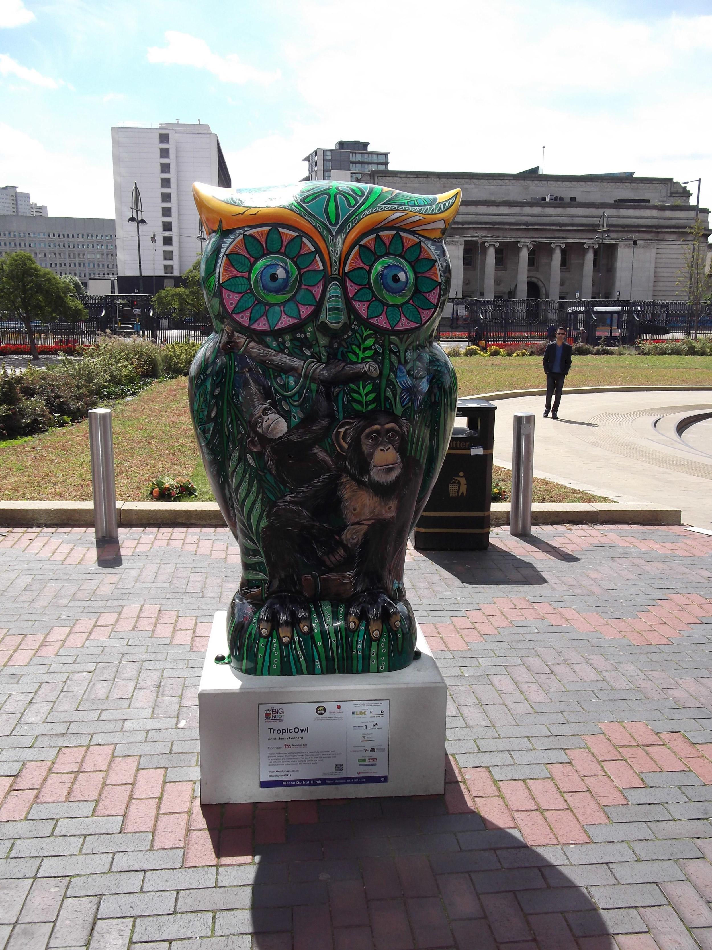tropic owl.JPG