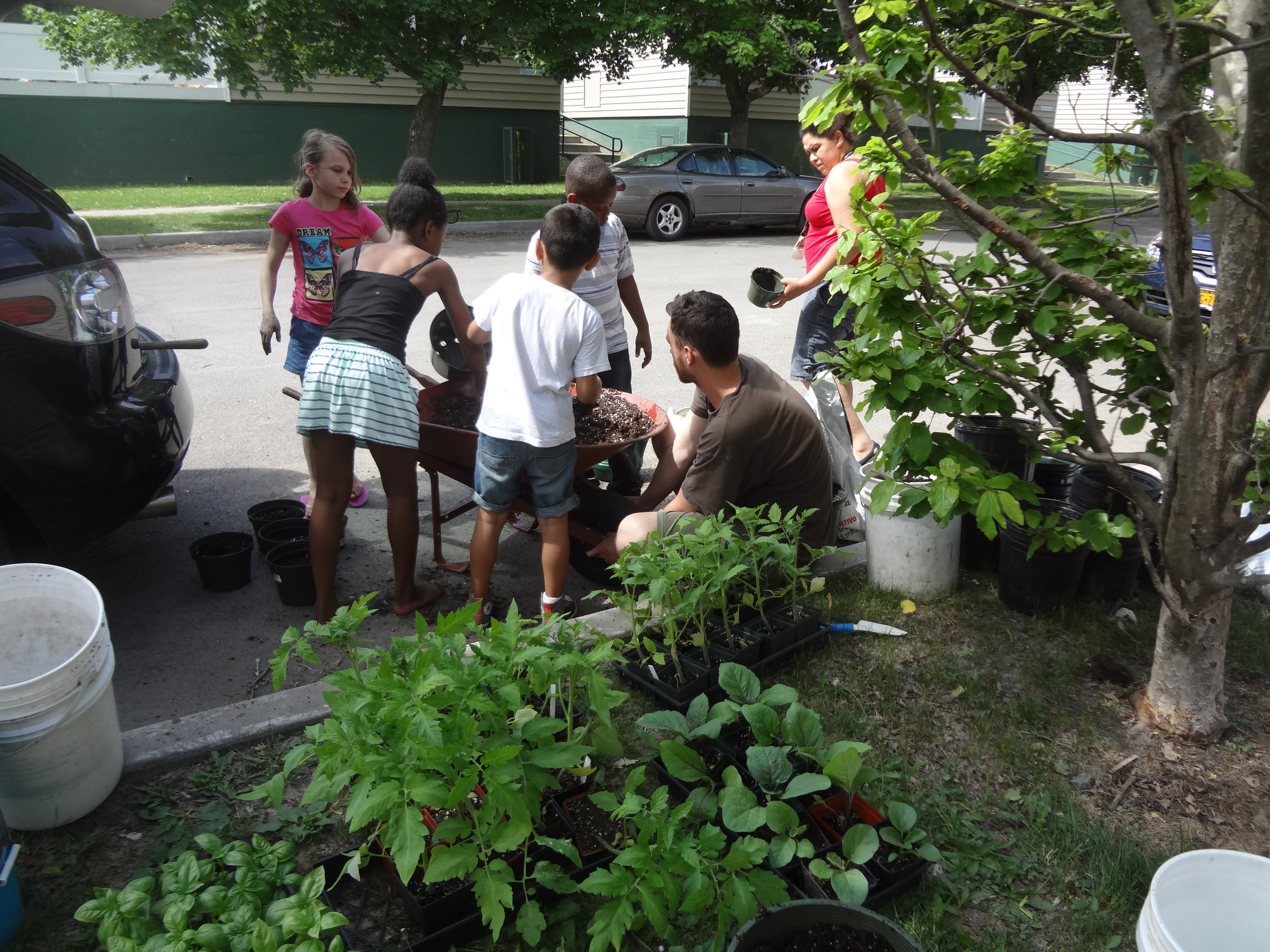Young gardeners-in-training helping out at a community gardening event. Picture: Chrys Gardener.