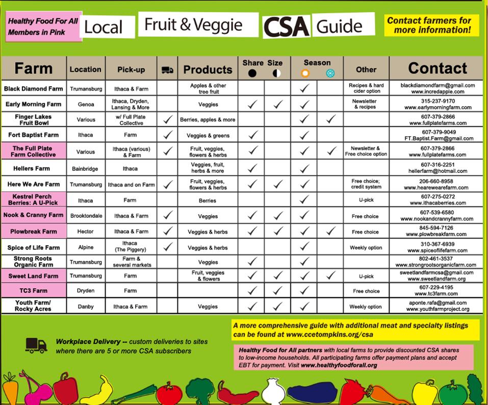 2019 CSA Guide
