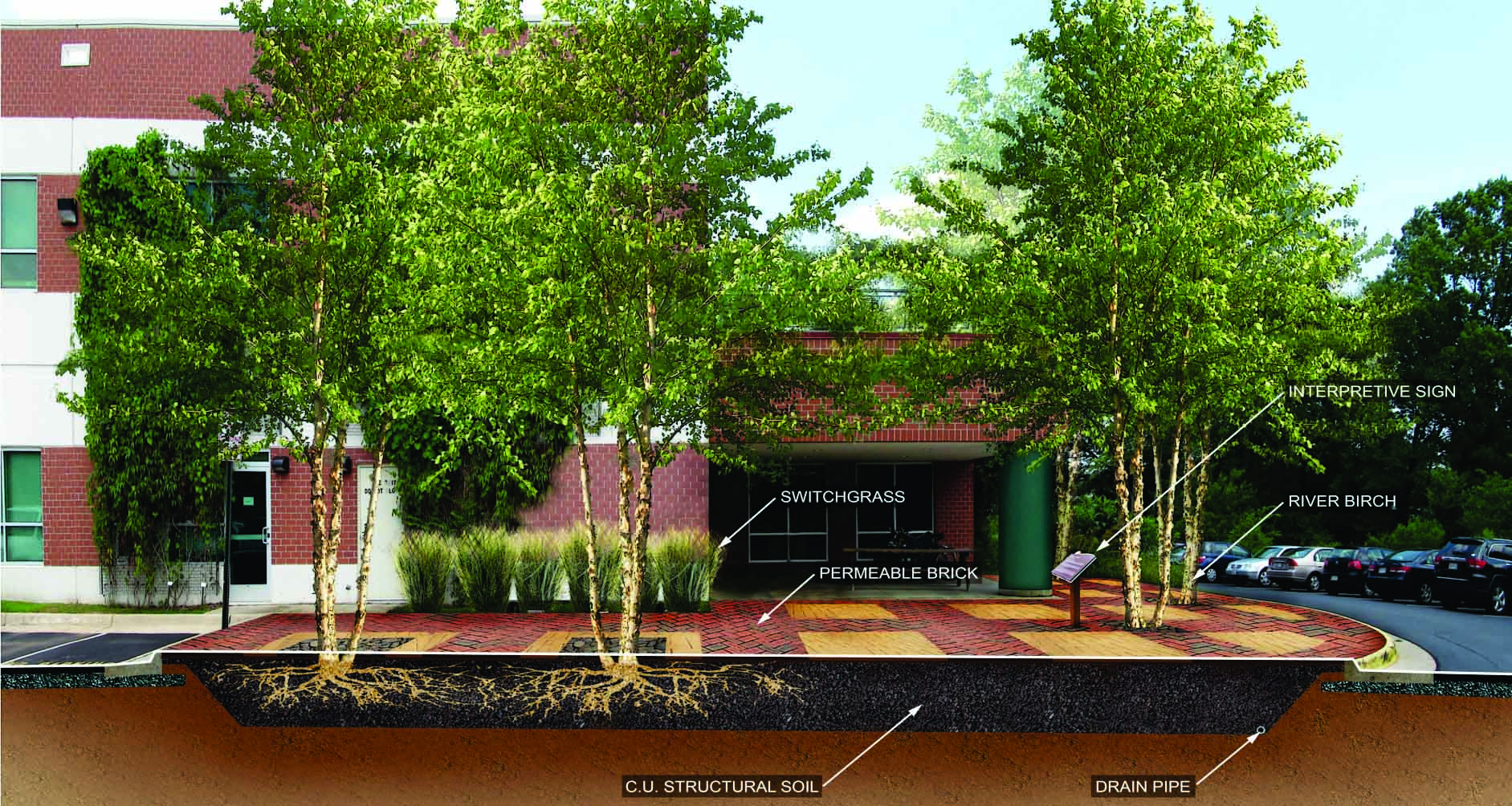 Rendering of potential patio design highlighting the use of permeable pavement and C.U. Structural Soil at WSSI's LEED Gold-certified office in Gainesville, VA.