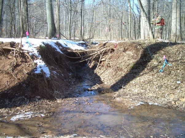 """Before:  This 800 ft section of an unnamed tributary to Flatlick Branch exhibited significant incision and was completely disconnected from the floodplain. As a result, """"adequate outfall"""" was not achieved, threatening approval of this important project."""