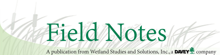 Field notes banner.png