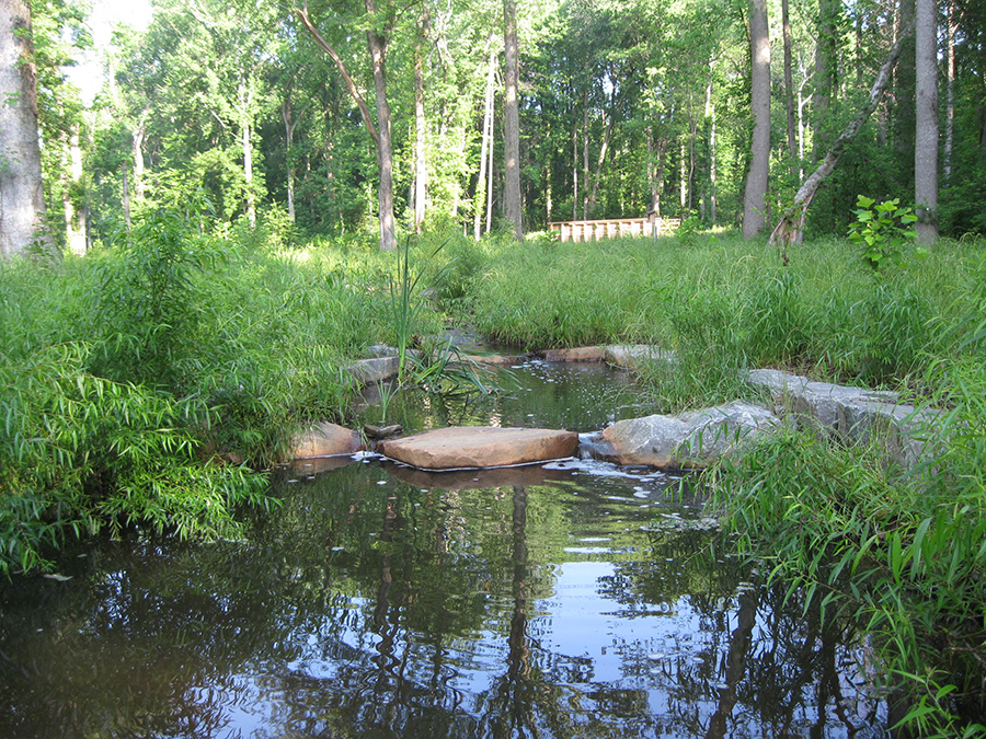 A restored section of Snakeden Branch in the Northern Virginia Stream Restoration Bank 2 years after construction.
