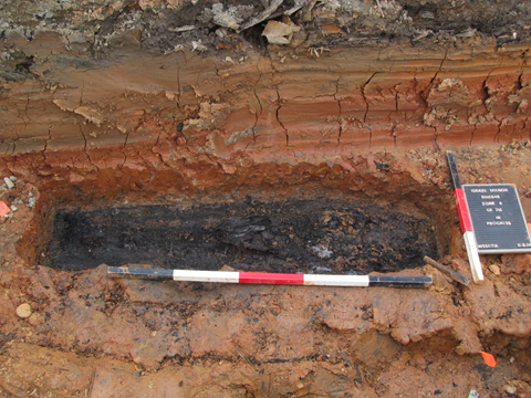 Intact burial discovered and later disinterred by WSSI archeologists.