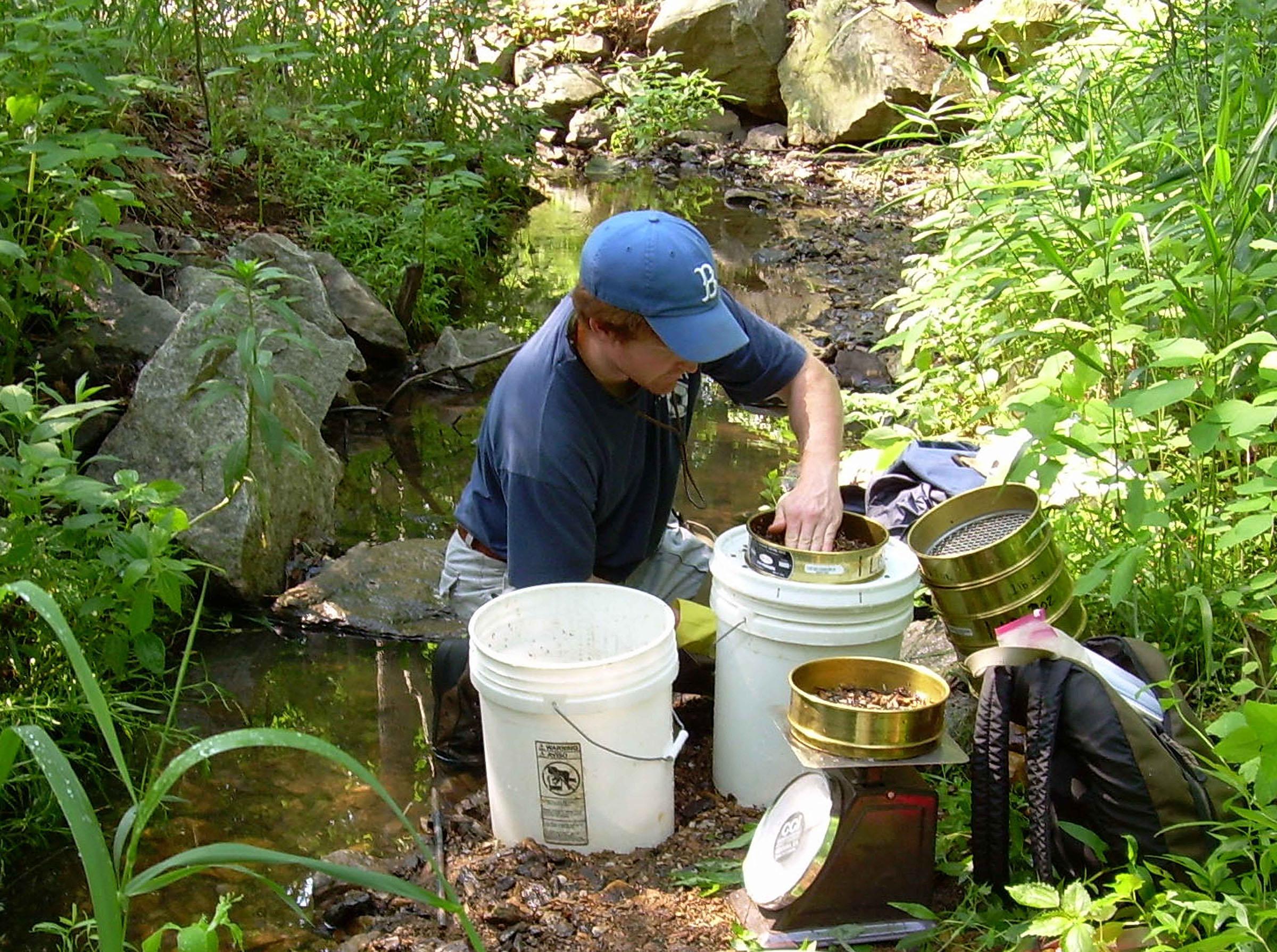 WSSI stream restoration engineer evaluating stream bedload.