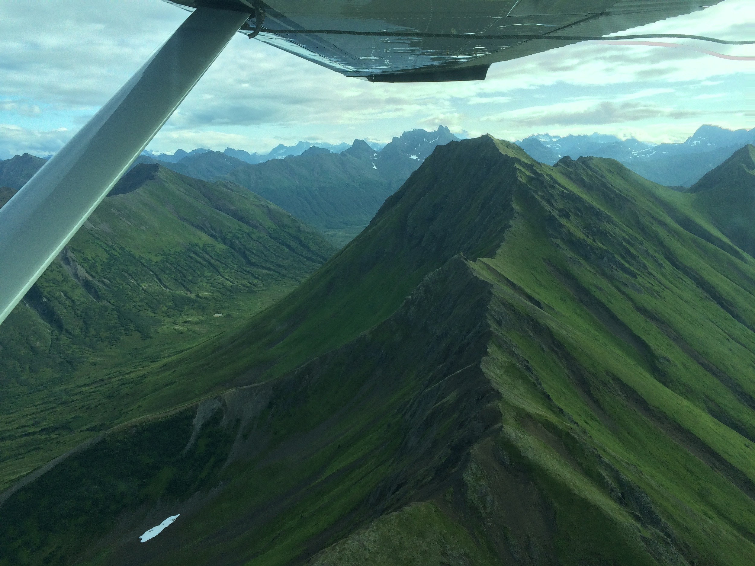 Ridge hopping in the Cessna 185. Welcome to the Jungle.