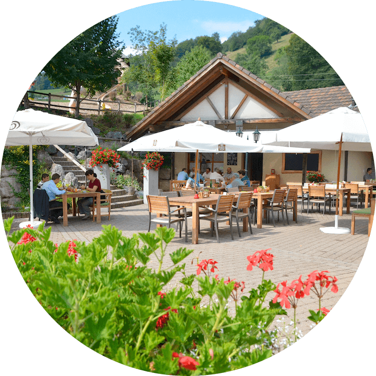 Restaurant Rumpel Trimbach 1 (1) (1).png