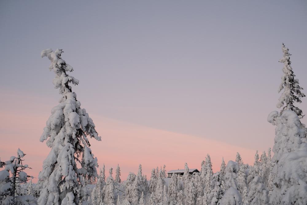 ZM_Norway_2015-26_web.jpg