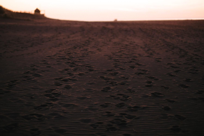 engagement bethells beach - new zealand (65).jpg