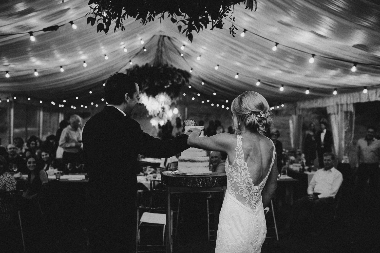 new-zealand-wedding-auckland (118).jpg