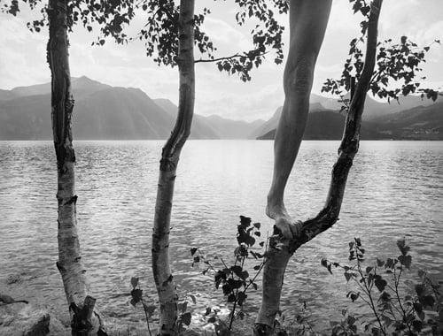 ©Arno Rafael Minkkinen