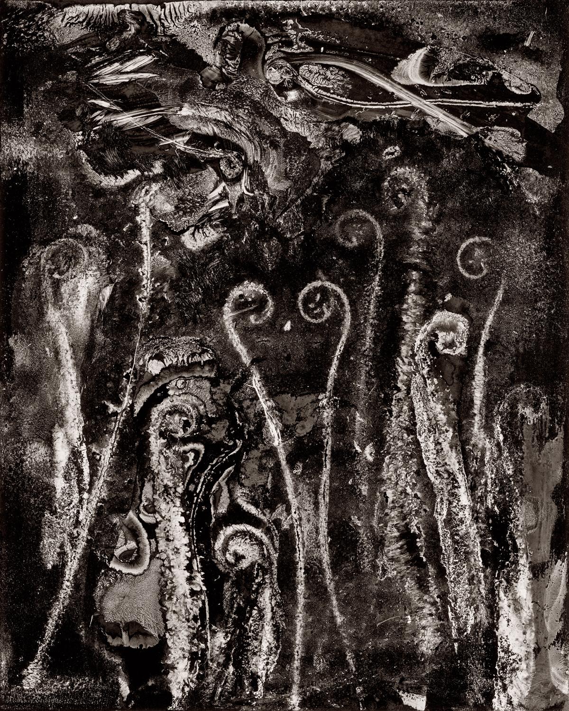 MoMA - Abe Morell