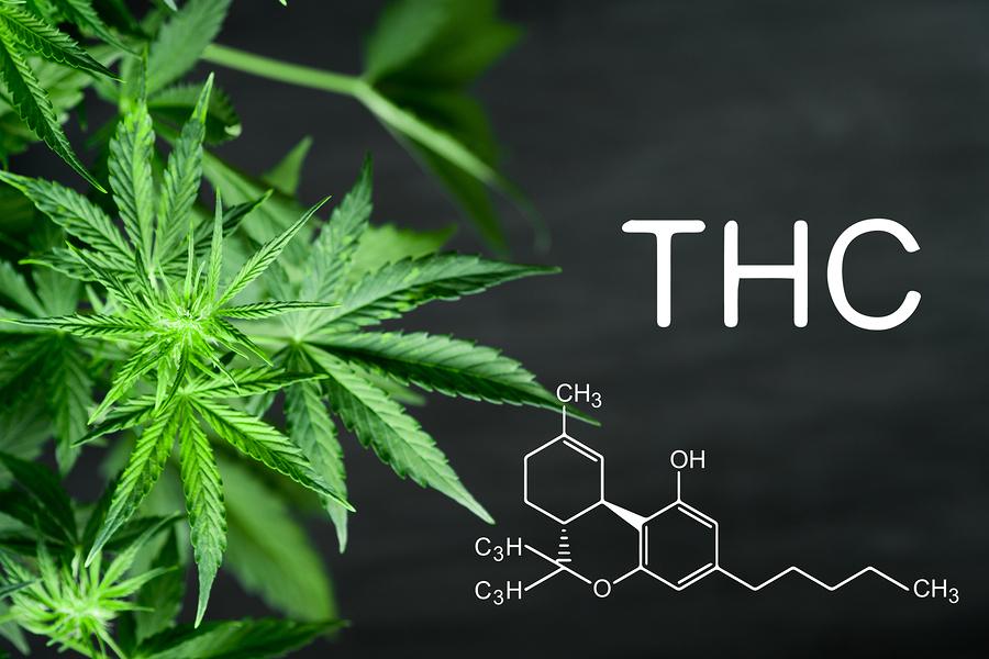 THC. Sativa. Indica.