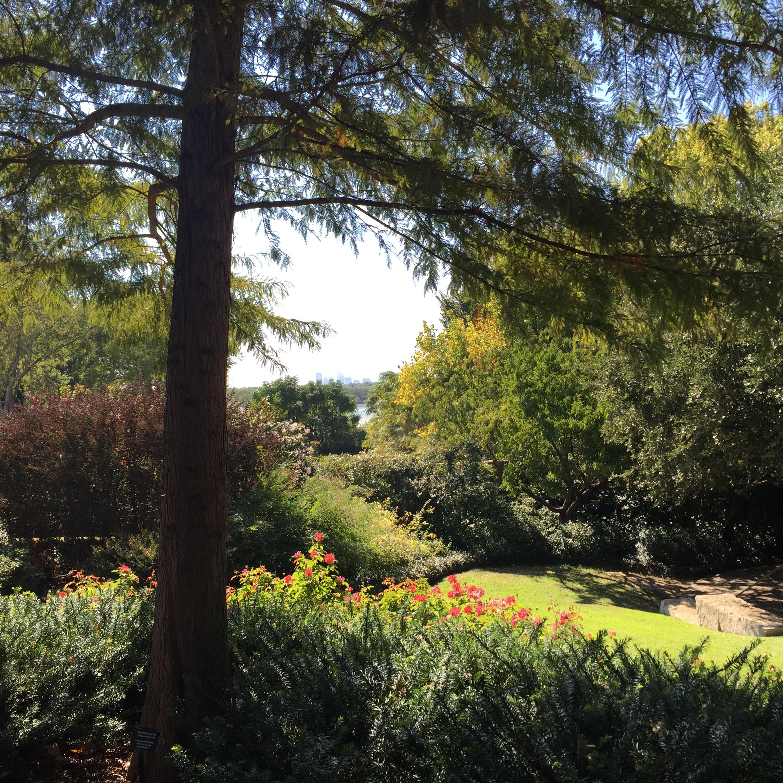 Taken at the Dallas Arboretum last weekend.