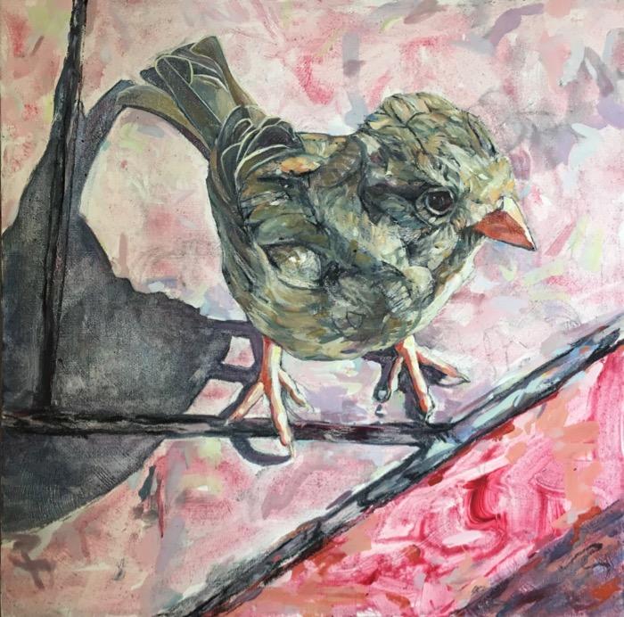 Sparrow (5).jpg