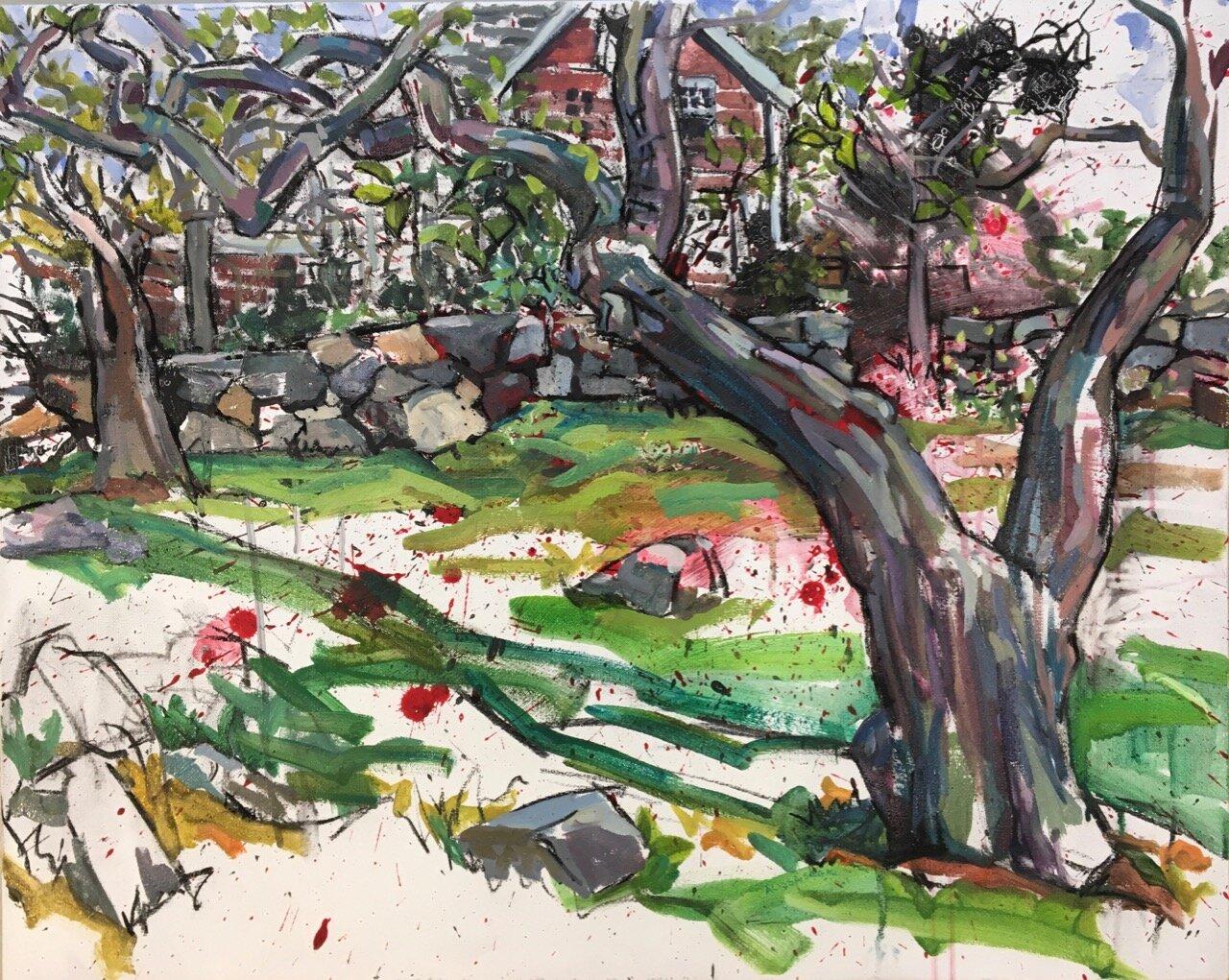 Tree Looking Towards Burlingham House