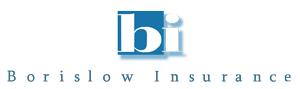 Borislow Logo WEB.png