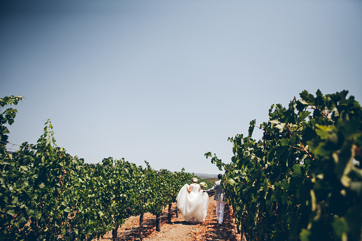 napa_winery_wedding_photography_margit_rich_ebony_siovhan_bokeh_photography_24.jpg