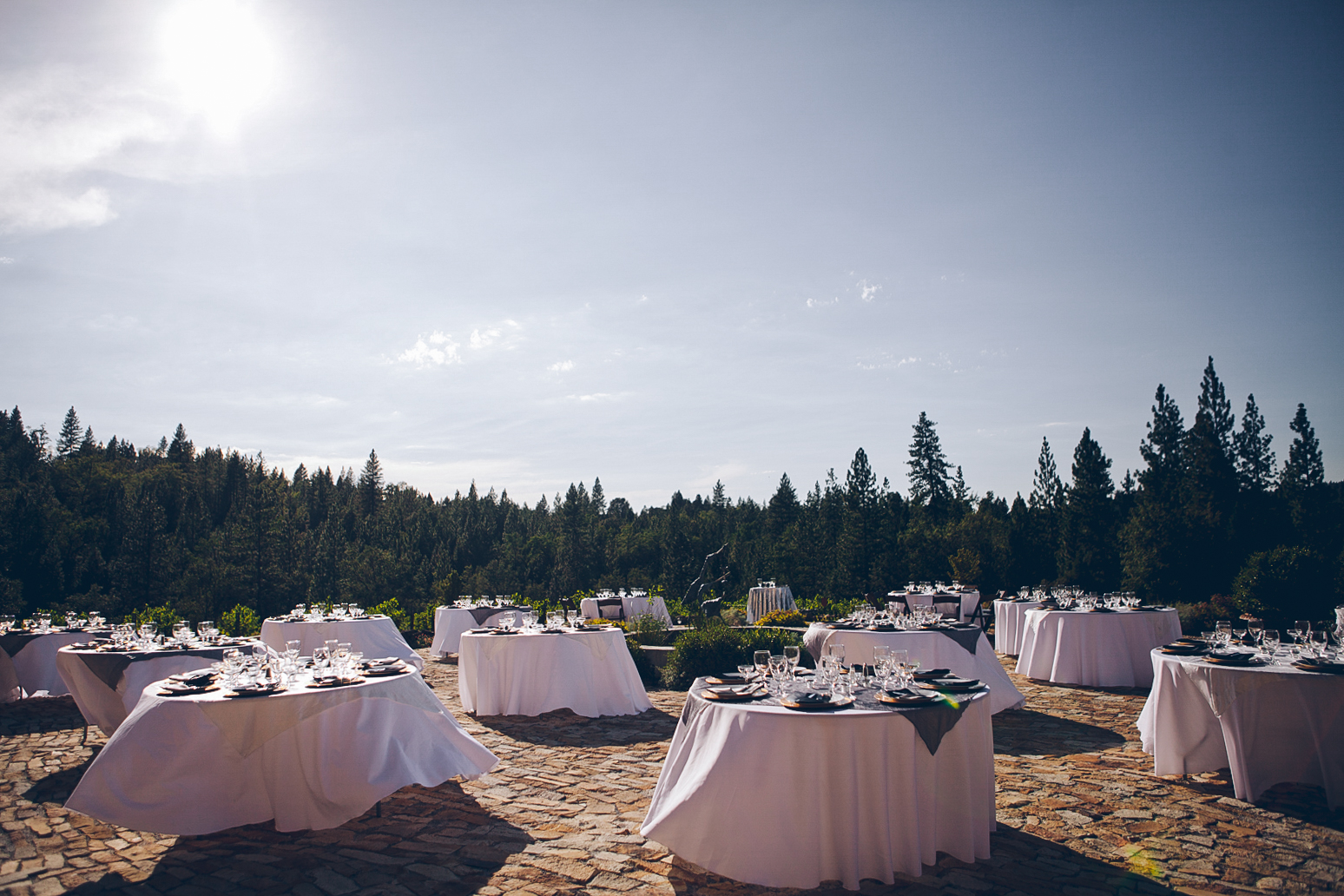 miraflores_winery_wedding_photography_ian_melissa_ebony_siovhan_bokeh_photography_17.jpg
