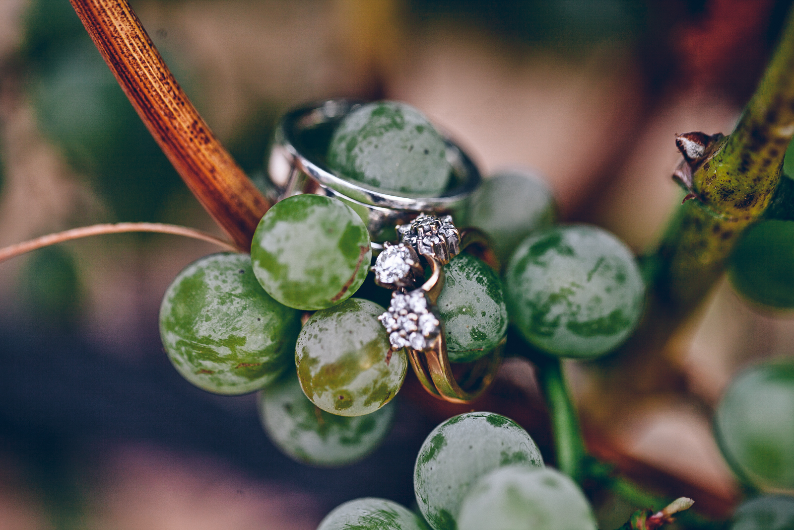 miraflores_winery_wedding_photography_ian_melissa_ebony_siovhan_bokeh_photography_65.jpg