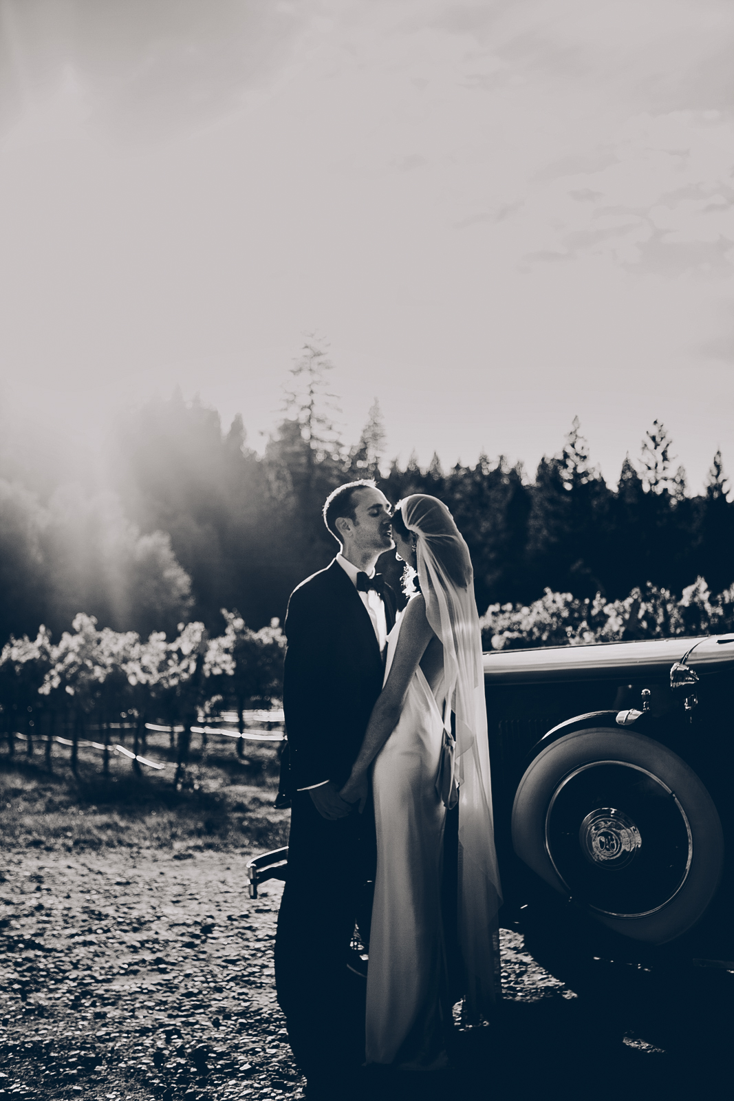miraflores_winery_wedding_photography_ian_melissa_ebony_siovhan_bokeh_photography_47.jpg