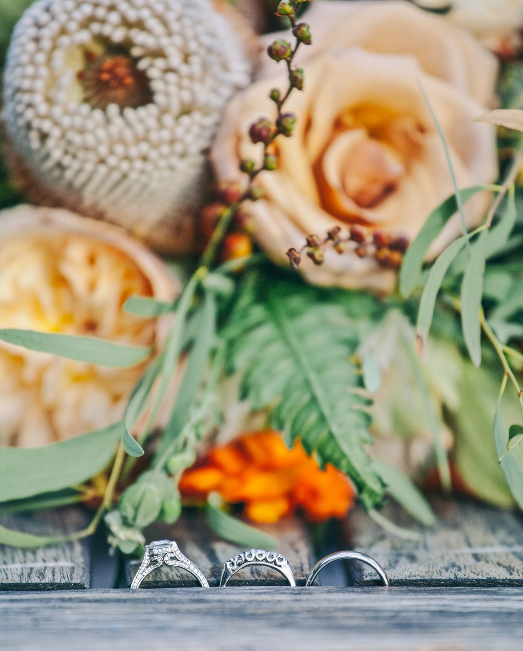 mt_tam_wedding_photography_marin_zac_katie_ebony_siovhan_bokeh_photography_59.jpg