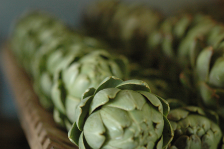 getting OCD with some artichokes.  These were made into canned artichoke hearts.