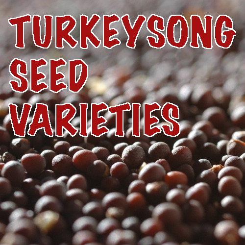 Turkey song seed and vegetable varieties