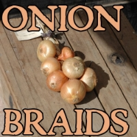 Onion braids, they're not just pretty