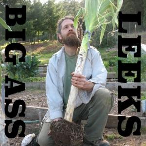 How to grow big ass leeks!