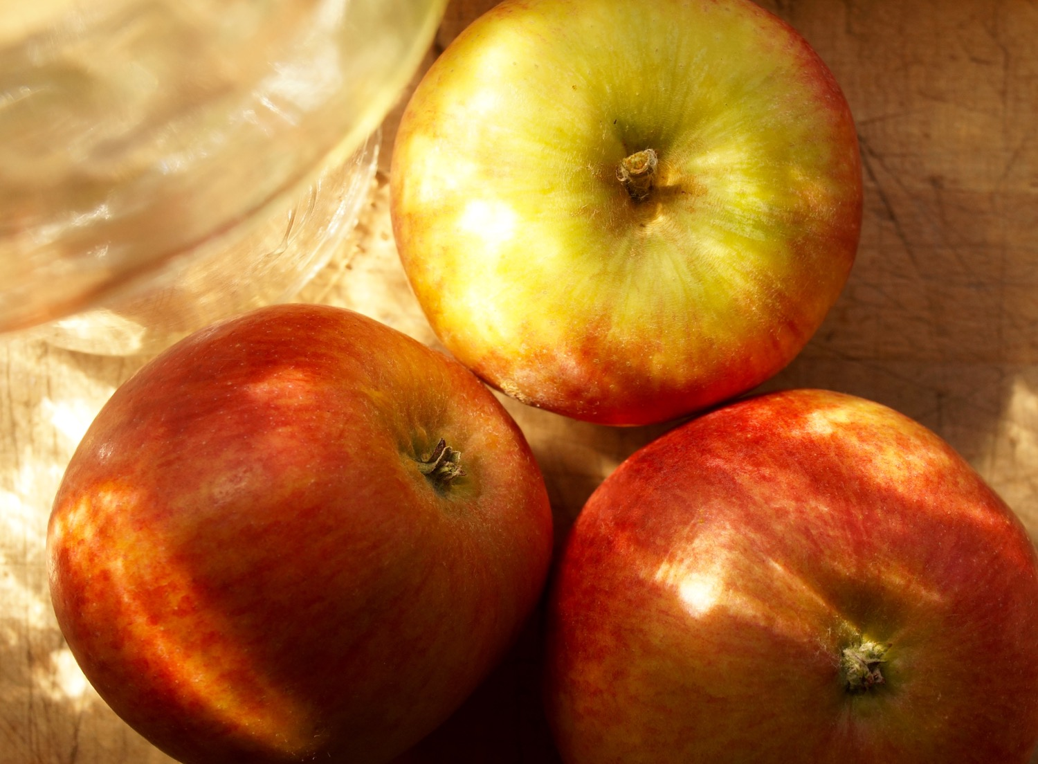 An old early apple variety known as Mother