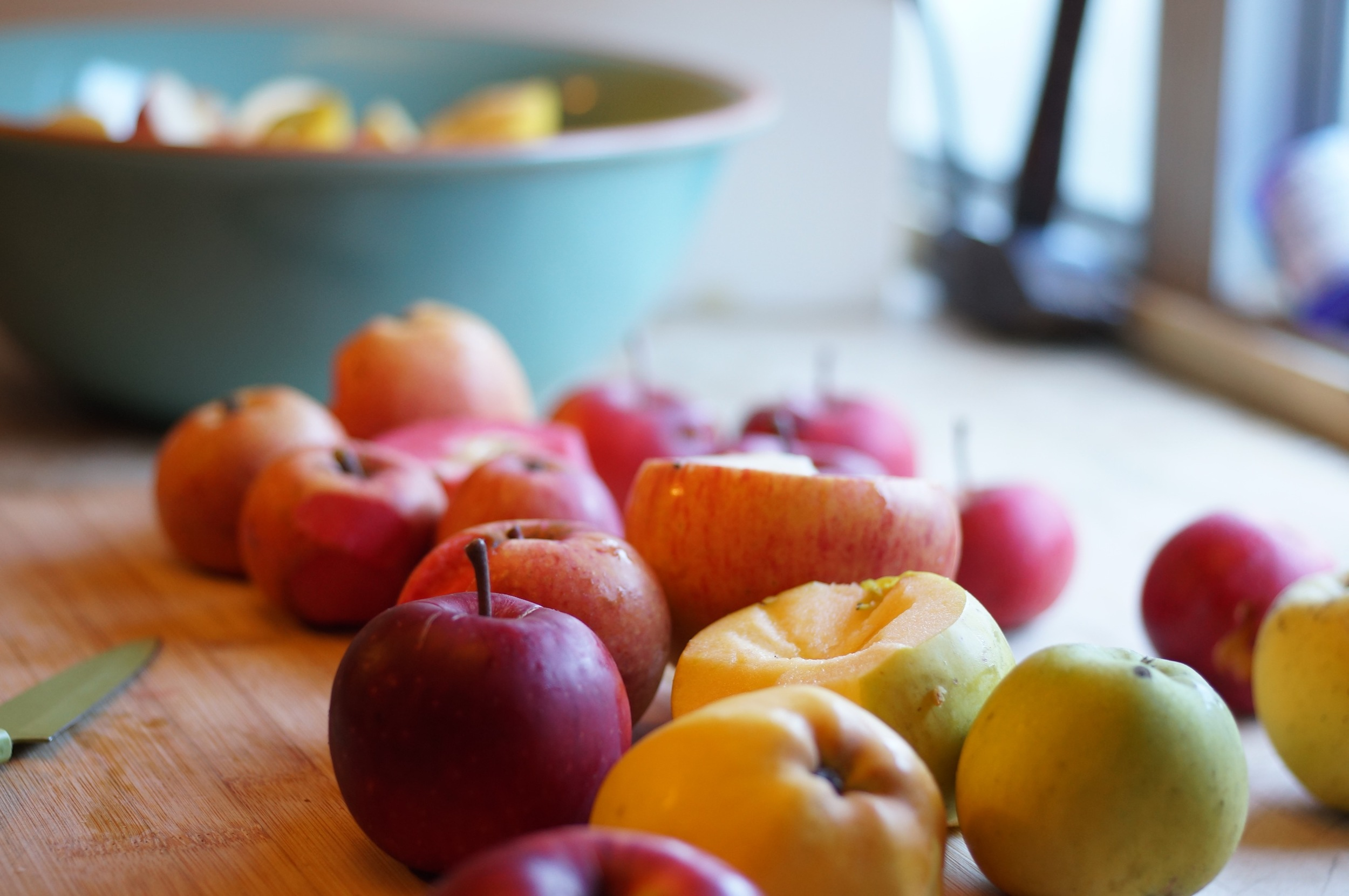Misc. late apples for apple butter experiment