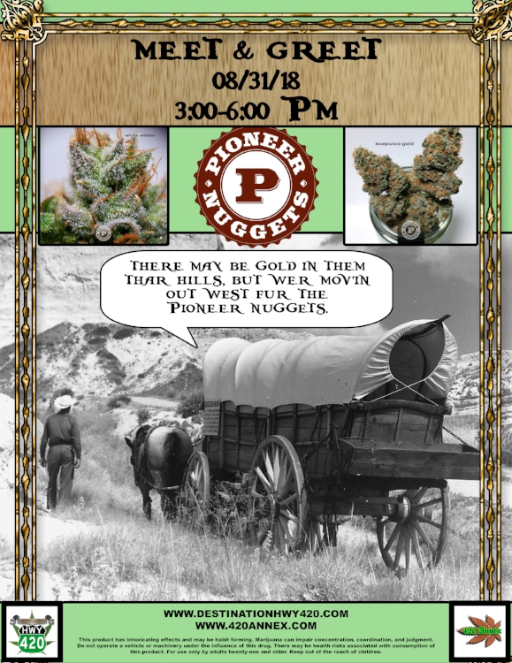 Meet & Greet with Pioneer Nuggets this Friday (08/31/18). Come visit us in East Bremerton for your chance to meet the amazing team responsible for some of our Best Bud's favorite marijuana products. Pioneer Nuggets has marijuana strains with traits for each type of cannoisseur. This artisnal grade cannabis is super terpy and potent, a must-try for those looking for a high class 420 experience. Stay tuned for a video interview with the Pioneer Nuggets team. Drop us a comment if you have some questions you'd like us to ask them. We hope to see you all this Friday!
