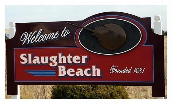 08 beach.jpg