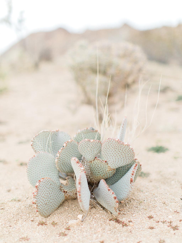 Joshua Tree Engagement Session | What to Wear for Pictures | Southern California Wedding Photographer | Mastin Labs Fuji Film | Fine Art Photographer | Desert Shoot.jpg.jpg