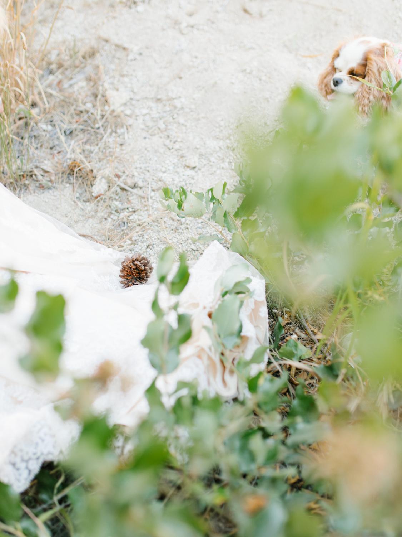 Leavenworth Washington Mountain Top | Wedding | Intimate Wedding Inspiration Outdoors | Pybus Bistro Wenatchee, Washington | VSCO | Simple Wedding | PNW Wedding | Emma Rose Company-60.jpg