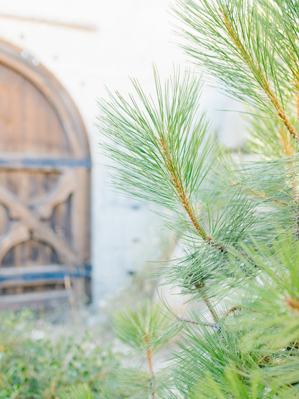 Leavenworth Washington Mountain Top | Wedding | Intimate Wedding Inspiration Outdoors | Pybus Bistro Wenatchee, Washington | VSCO | Simple Wedding | PNW Wedding | Emma Rose Company-64.jpg