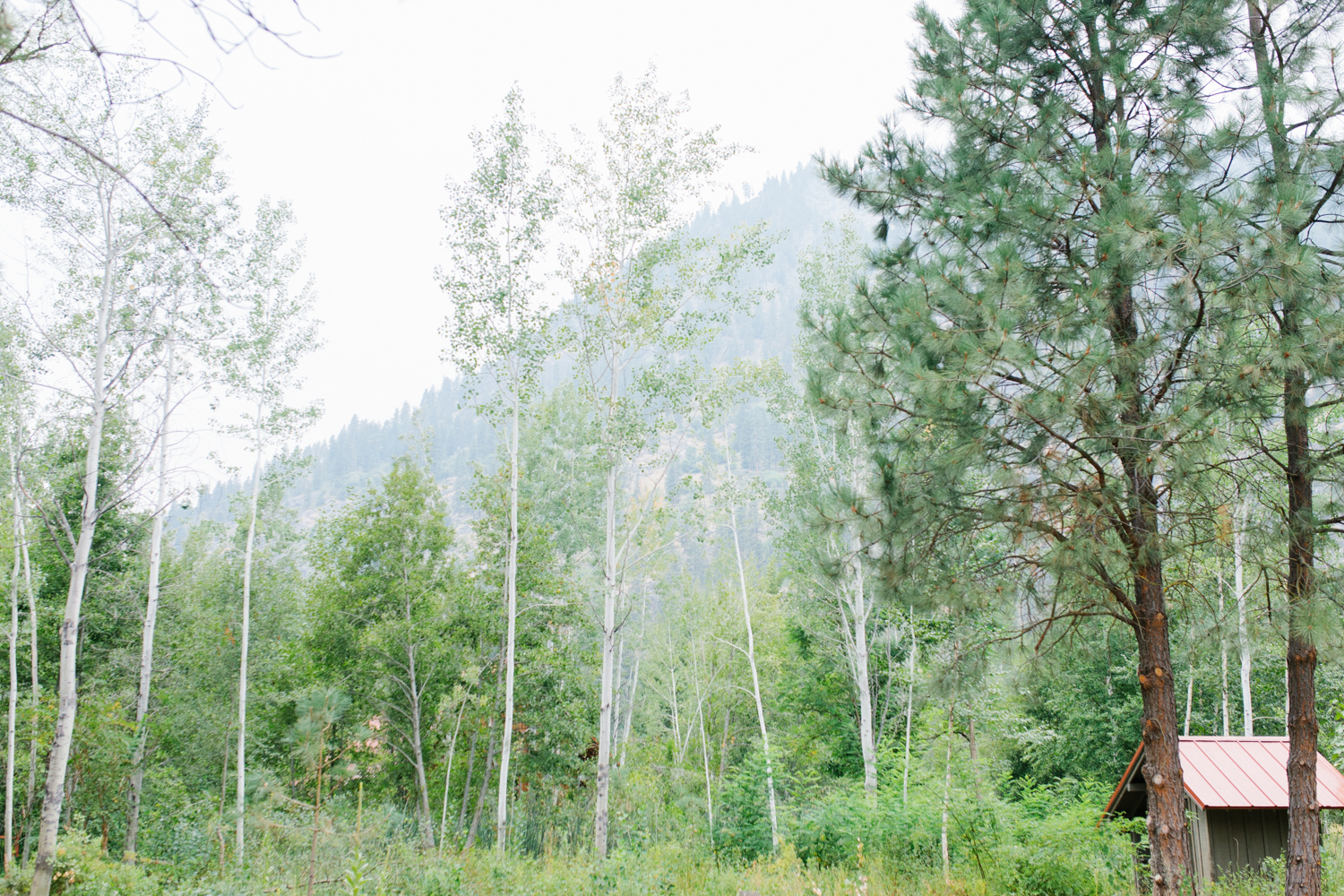 Grey and White Wedding in the Mountains of Leavenworth, Washington | Sleeping Lady | Classic and Timeless Wedding | VSCO | Bride and Bridesmaids Getting Ready | Bride in Victoria Secret Robe.jpg-1570.jpg