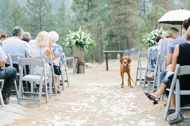 Grey and White Wedding in the Mountains of Leavenworth, Washington | Sleeping Lady | Classic and Timeless Wedding | VSCO | Leavenworth Wedding Ceremony at Sleeping Lady.jpg-2795.jpg