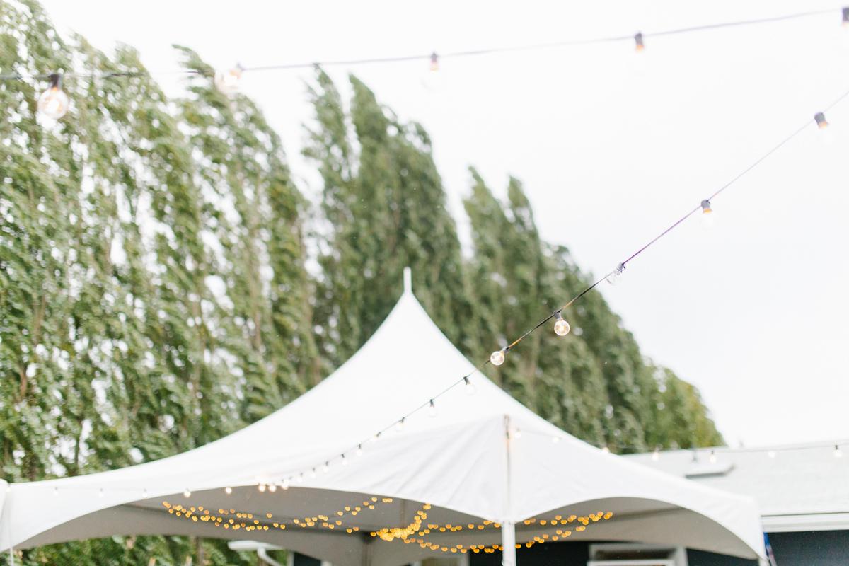 Stunning Fall Washington Wedding | PNW Wedding | Seattle Wedding Photographer Light and Airy | VSCO | Emma Rose Company Photography | Hydrangea Wedding Dress | Wedding Details | Non Traditional Wedding Gown-84.jpg