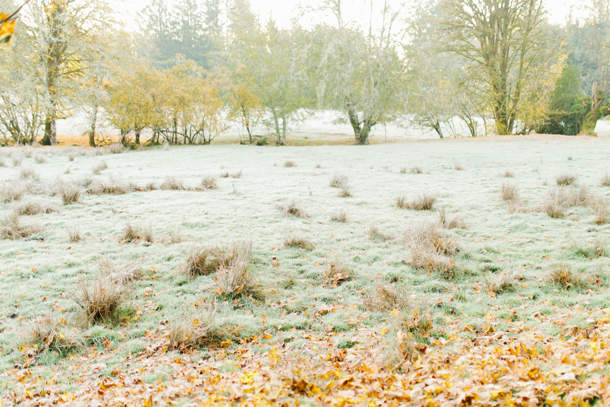 Sunrise Engagement Session on Cattle Ranch | Emma Rose Brides | Emma Rose Company Photography | Beautiful Sunrise Photo Session | VSCO | Winter Engagement Frosty Field Photo Session | Cute Engagement Inspiration-20.jpg