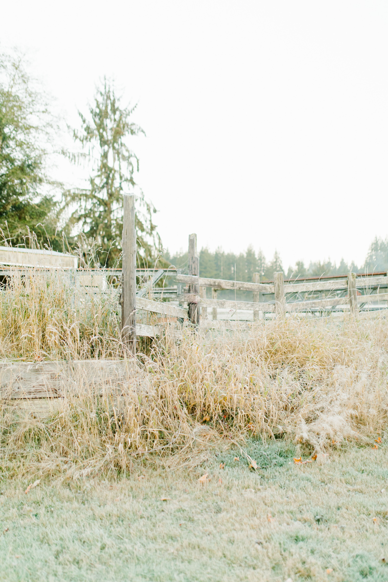 Sunrise Engagement Session on Cattle Ranch | Emma Rose Brides | Emma Rose Company Photography | Beautiful Sunrise Photo Session | VSCO | Winter Engagement Frosty Field Photo Session | Cute Engagement Inspiration-23.jpg