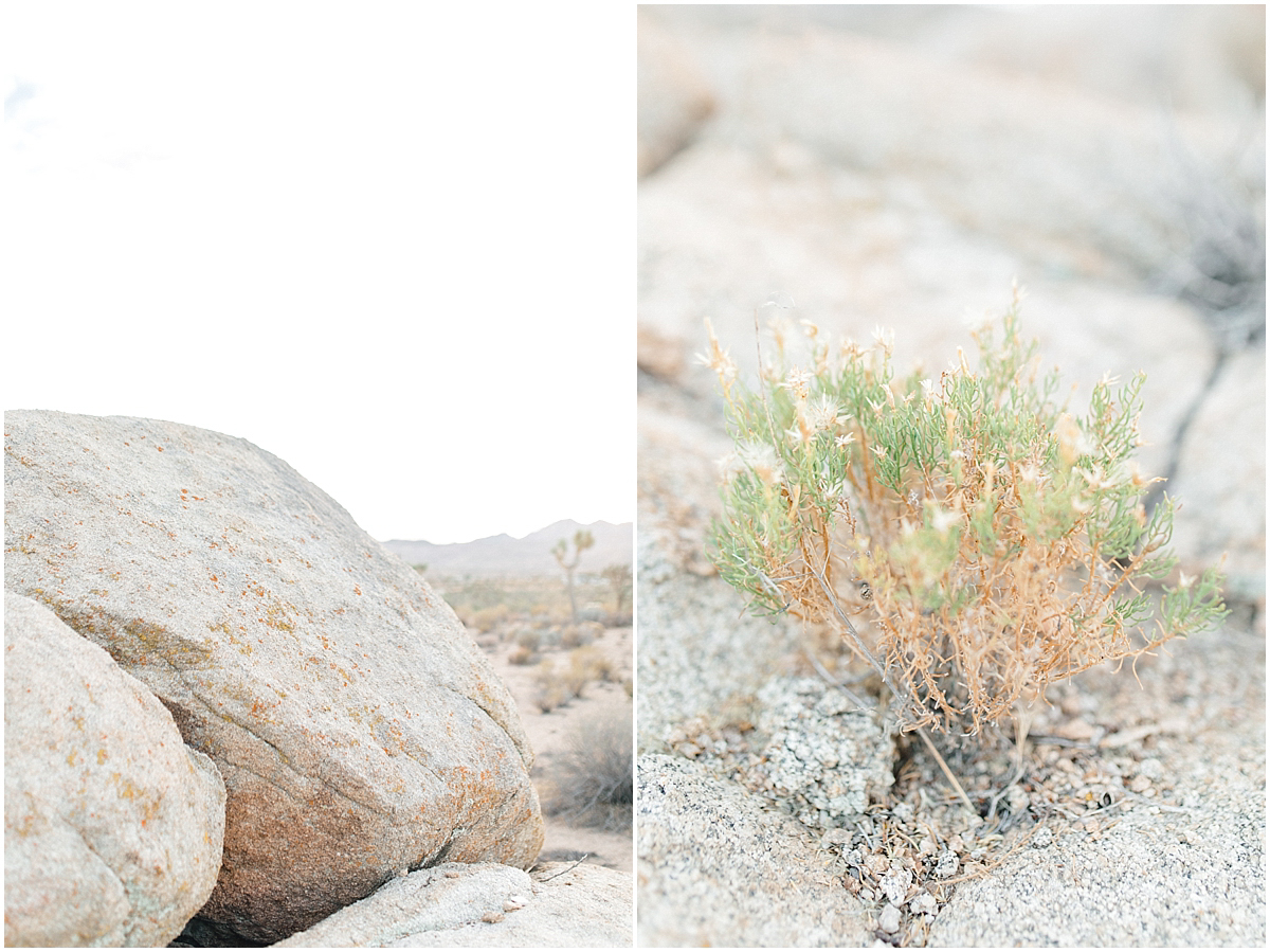 The Ruin Venue | Joshua Tree, California | Wedding Inspiration | The Dress Theory Desert Wedding | Emma Rose Company Wedding Photographer | Light and Airy Photographer | Kindred Presets-22.jpg