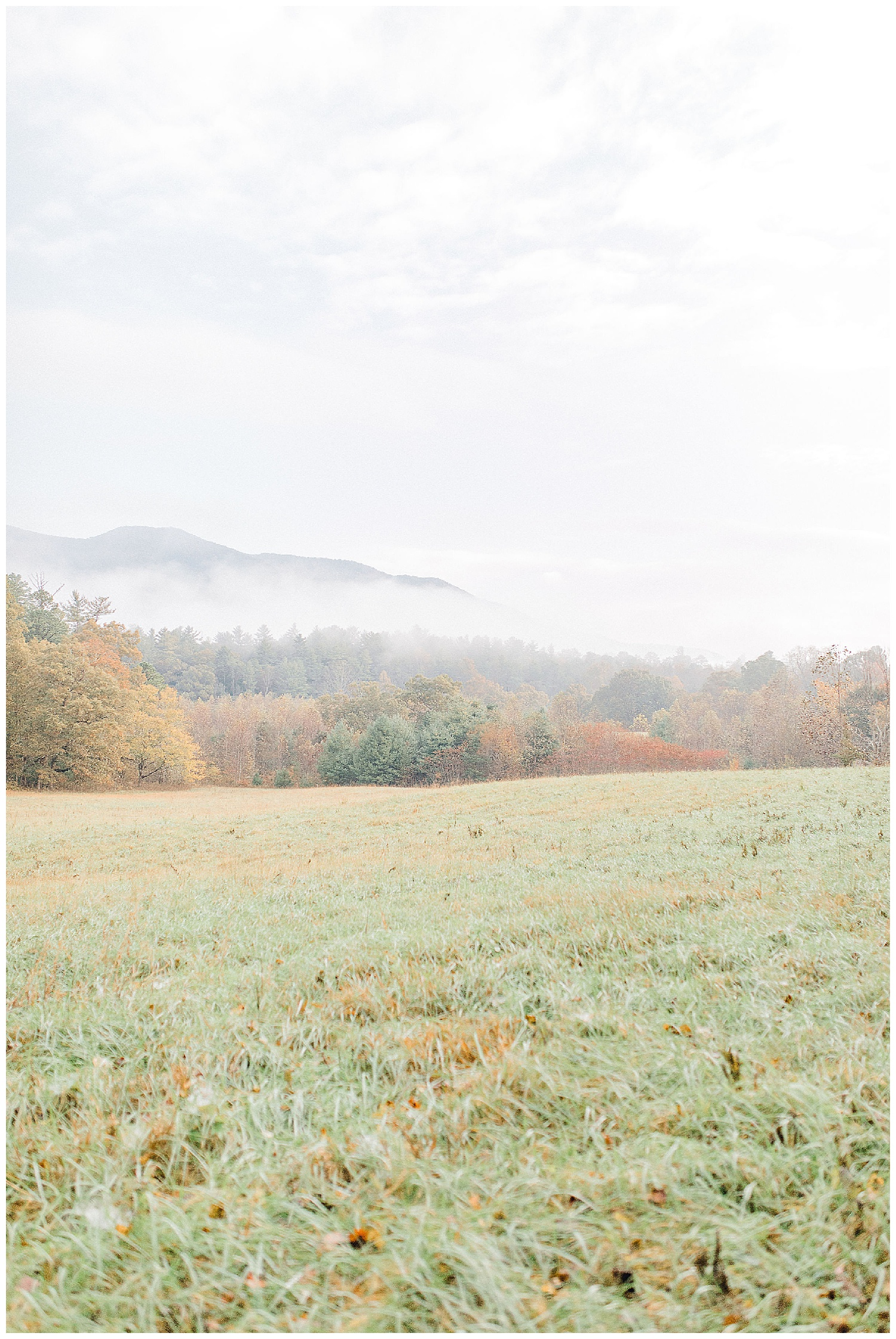 Emma Rose Company recently got to travel all the way to Nashville to photograph the most beautiful post-wedding bride and groom portraits in the Great Smoky Mountains with a gorgeous couple! Nashville wedding inspiration at it's finest._0031.jpg