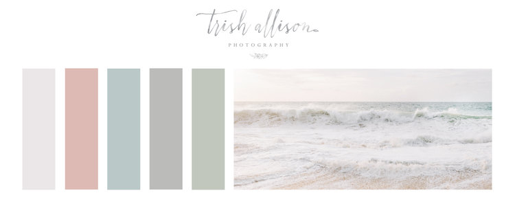 Trish Allison Photography Website Launch with custom Squarespace website designer for photographers, Emma Rose Company.  Beautiful branding and website design inspiration1.jpg